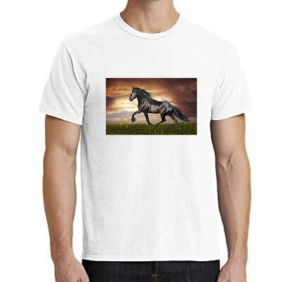 shirt-wit